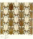scarabs tessellate in art by M C Escher