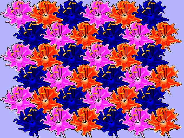 FLOWERS An Escher Style Tessellation By Kay Rollans