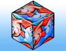 goldfish cube tessellation